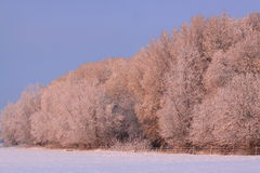 Colorful dutch winter landscape stock photos