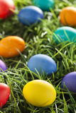 Colorful Dyed Eggs for Easter Royalty Free Stock Image