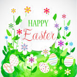 Colorful Easter card with flowers and eggs. Isolated on white background Stock Photography