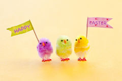 Colorful easter chicks. Colorful easter chenille chicklets in various bright  colors Stock Image