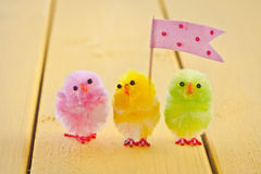 Colorful easter chicks. Colorful easter chenille chicklets in various bright  colors Royalty Free Stock Image