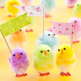Colorful easter chicks Stock Photos