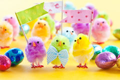 Colorful easter chicks. Colorful easter chenille chicklets in various bright  colors Stock Photos