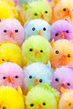 Colorful easter chicks. Colorful easter chenille chicklets in various bright  colors Royalty Free Stock Images