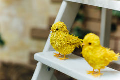 Colorful easter chicks on thwhite staircase Stock Images