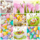 Colorful easter collage. With eggs and flowers Stock Photo