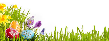 Colorful Easter egg banner with spring flowers royalty free stock photography