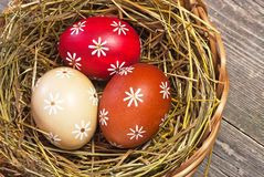 Colorful easter egg in the basket Royalty Free Stock Images