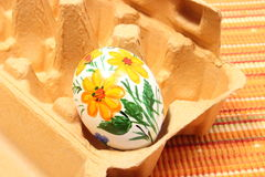 Colorful Easter egg in carton package Royalty Free Stock Photo