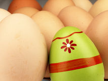 Colorful Easter egg in the company of ordinary eggs. Royalty Free Stock Photo