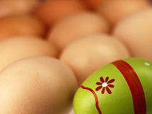 Colorful Easter egg in the company of ordinary eggs. Stock Image