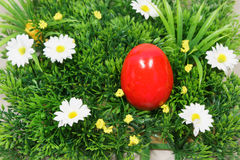 Colorful easter egg. Colorful eggs lie on a synthetic grass and flowers Stock Photography