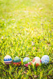 colorful Easter egg in the fresh spring meadow Royalty Free Stock Image