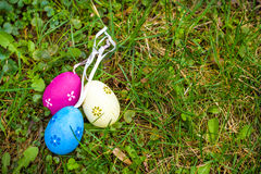 Colorful Easter egg in the fresh spring meadow Royalty Free Stock Photography