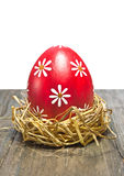 Colorful easter egg in the nest Stock Image