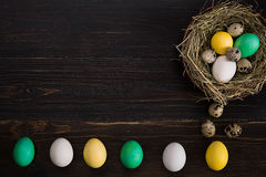 Colorful easter egg in nest on dark wood board. Stock Photography