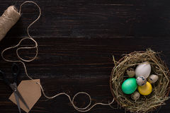 Colorful easter egg in nest on dark wood board. Royalty Free Stock Image