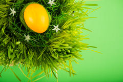 Colorful easter egg in nest Royalty Free Stock Photography