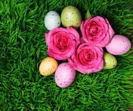 Colorful Easter Egg and Pink Roses on Green Grass Royalty Free Stock Photography
