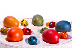 Colorful Easter egg tray Stock Image