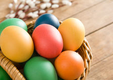 Colorful easter eggs. In wicker basket. Some catkins in background. All on wooden table stock photos