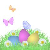 Colorful easter eggs. Three colorful easter eggs in the grass with daisies and butterfly Stock Photo