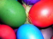 Colorful Easter eggs. With a little chicky hiding between them stock image