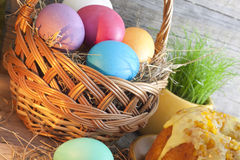 Colorful easter eggs in the basket Royalty Free Stock Photography