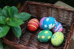 Colorful Easter eggs in a basket royalty free stock image