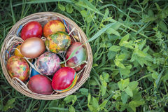 Colorful Easter eggs in a basket and green grass background.  Stock Photo