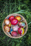 Colorful Easter eggs in a basket and green grass background.  Stock Photos