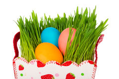 Colorful easter eggs in the basket with green grass. Isolated on white Royalty Free Stock Photos