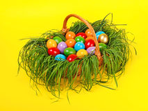 Colorful easter eggs in basket Royalty Free Stock Photography