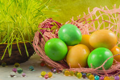 Colorful Easter eggs in a basket, selective focus Stock Images