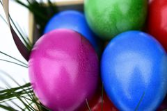 Colorful Easter eggs in basket theme. Colorful Easter eggs in a basket with fresh grass Stock Images