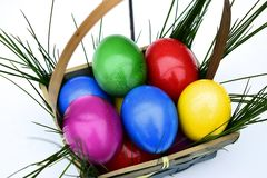 Colorful Easter eggs in basket theme. Colorful Easter eggs in a basket on a white background with fresh grass Royalty Free Stock Photography