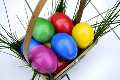 Colorful Easter eggs in basket theme. Colorful Easter eggs in a basket on a white background with fresh grass Royalty Free Stock Photos