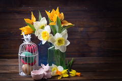 Colorful easter eggs in bird cage, fresh tulips and narcissus Stock Photo