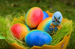 Colorful Easter eggs in bowl with grass Royalty Free Stock Photo