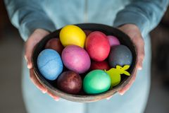 Colorful Easter eggs in bowl in woman`s hands stock images