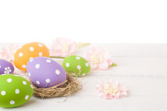 Colorful easter eggs and branch Royalty Free Stock Photo