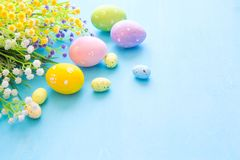 Colorful easter eggs and branch with flowers on blue wooden desk.  Stock Photo