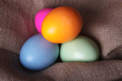 Colorful easter eggs on canvas Stock Images