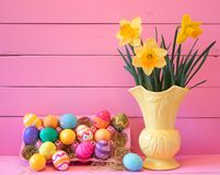 Colorful Easter Eggs in Carton with Vintage Yellow Vase filled with Spring Daffodils against Bright Pink Wood Board Background wit