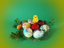Colorful Easter eggs and chick in plate stock photography