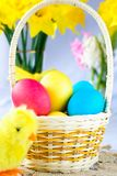 Colorful Easter Eggs and a chicken Royalty Free Stock Photos