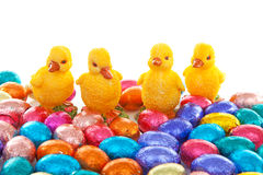 Colorful easter eggs and chickens Stock Photos