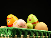 Colorful Easter eggs in the company of ordinary eggs. Stock Image