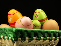 Colorful Easter eggs in the company of ordinary eggs. Royalty Free Stock Images