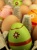 Colorful Easter eggs in the company of ordinary eggs. Royalty Free Stock Photography